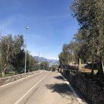 Panoramica bassa di Malcesine